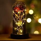 INAROCK La Bella y la Bestia Rose, Valentine Red Silk Rose en Dome Glass con 20 LED Fairy...