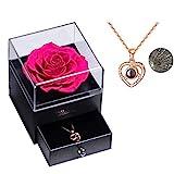 Rosa real preservada Eterna hecha a mano Rosa preservada con amor, collar de regalo, flor rosa...